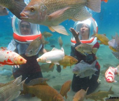 Umbul Ponggok: Selfi di Dalam Air Bersama Ikan