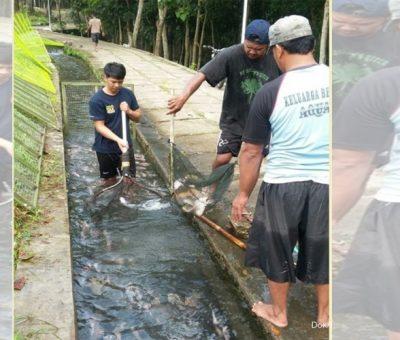 Aliran berkah dari derasnya aliran air di Desa Ponggok, Klaten (3)