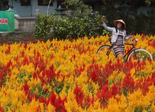 Tempat Selfi di Taman Bunga Klaten