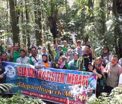 Aqua Klaten Berperan Serta Dalam Pelestarian Anggrek Merapi Di Taman Nasional Gunung Merapi