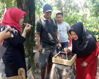 Desa Glodogan Klaten Kembangkan Lebah Madu Klanceng