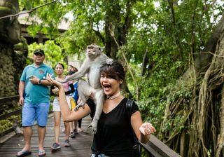 Tren Wisata Diprediksi Berubah Menjadi Solo Traveling dan Small Group Tour